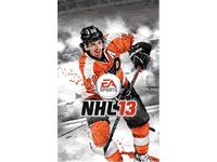 NHL 13 Manuals