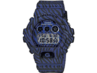 Casio DW6900ZB-2/3/8/9 Watch Manuals